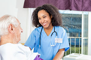 Hospice Traditional Care Model