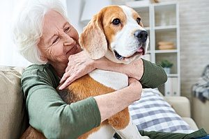 a senior citizen in hospice care holding her dog which is part of animal assisted therapy